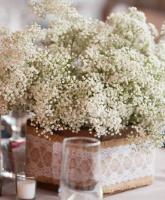 حفل زفافك صديق للبيئة